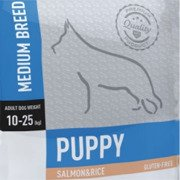 ARION ORIGINAL PUPPY MEDIUM SALMON&RICE