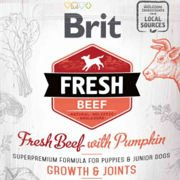 Brit Fresh Beef & Pumpkin Puppy Large Growth & Joints